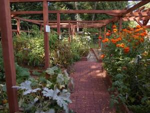 Mitzvah-Garden-Int